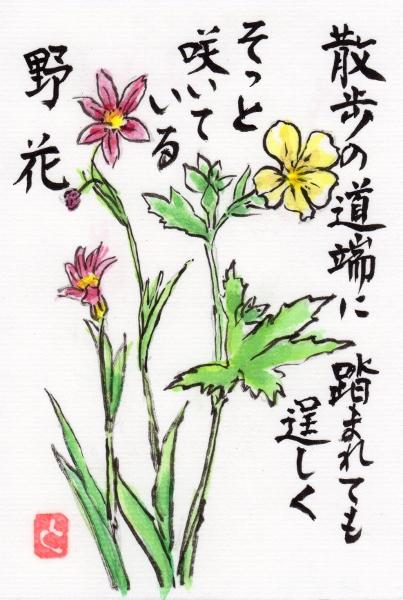 nobana160522.jpg