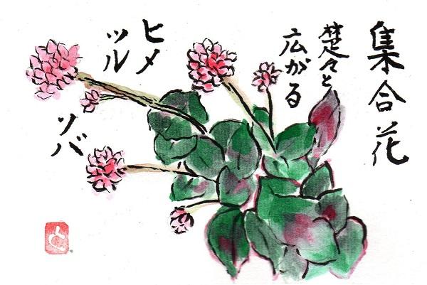 tsurusoba170507.jpg