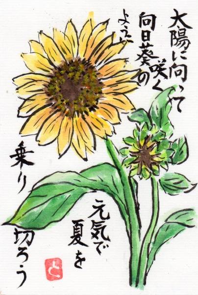 himawari160801.jpg