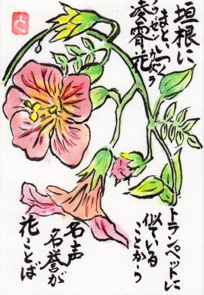 nouzenkazura160709.jpg
