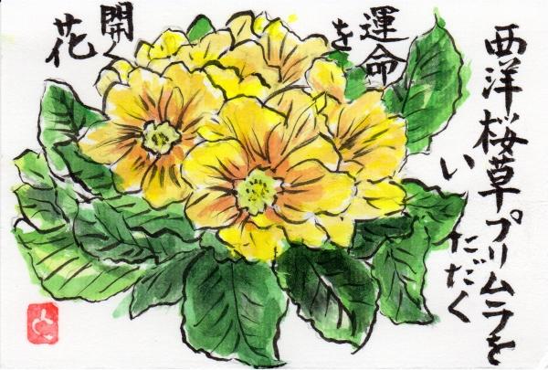 purimura0116.jpg